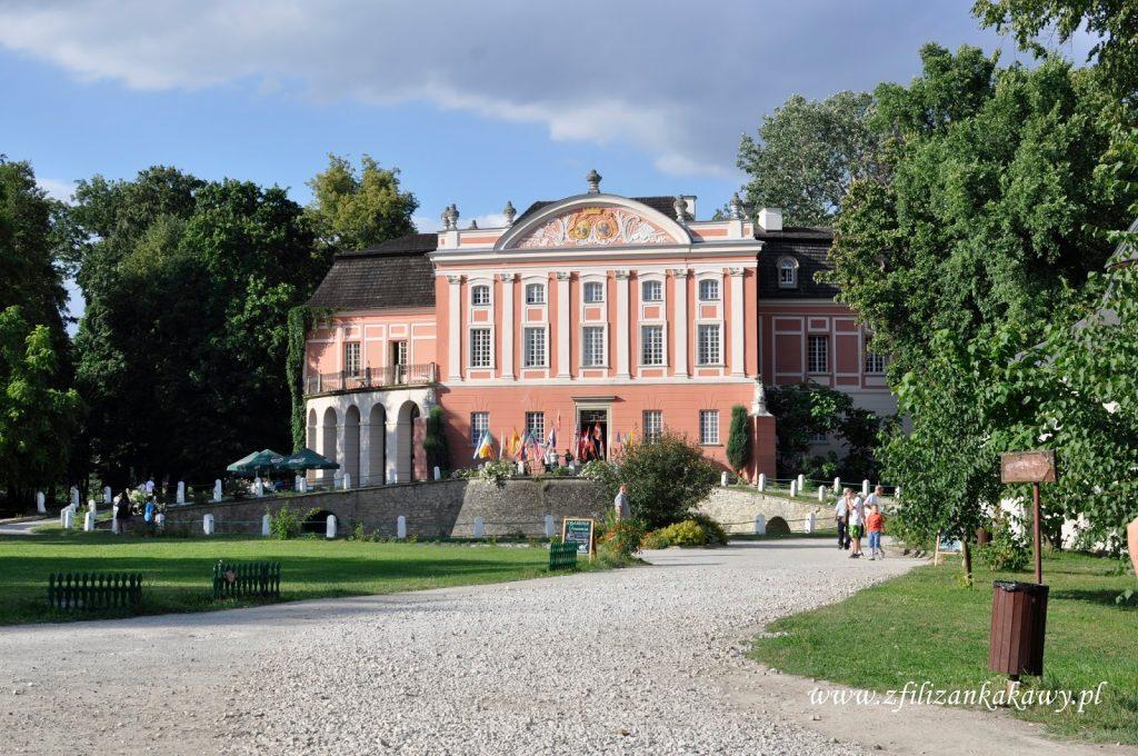 Kurozwęki pałac