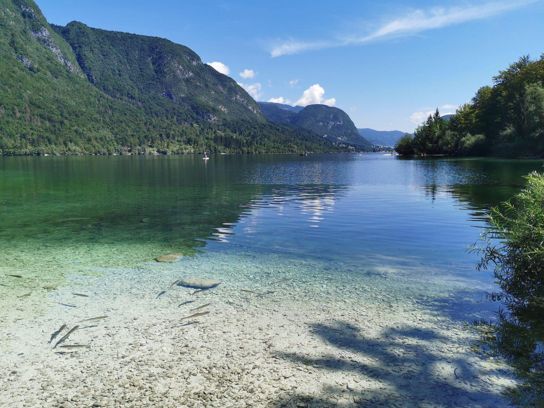 Słowenia jezioro Bohinj